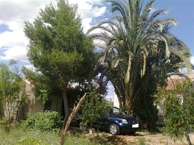 venta-terreno-ramos-lra016
